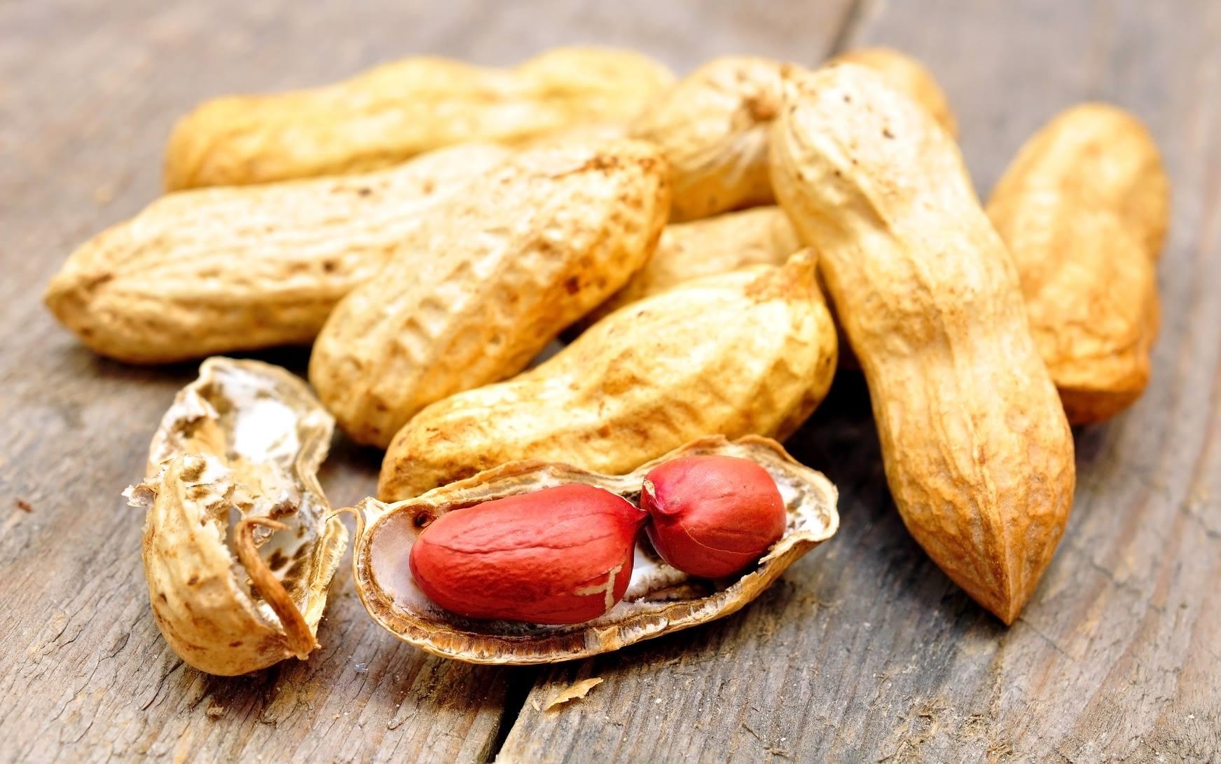 Le traitement de l'allergie à l'arachide de DBV technologies est au stade clinique