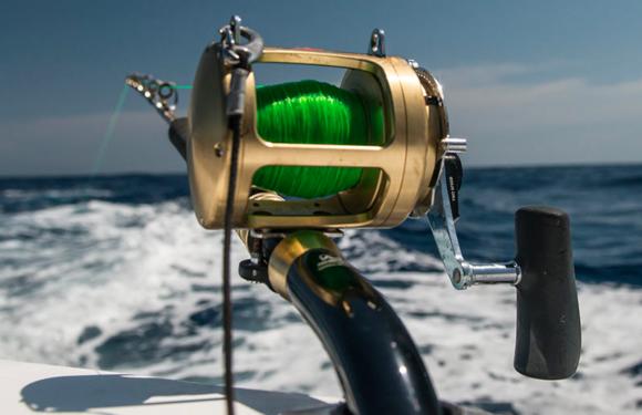 Pêche au gros : au large d'Antibes, vivez des moments forts